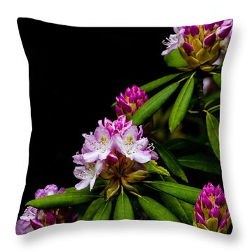 West Virginia State Flower Throw Pillow