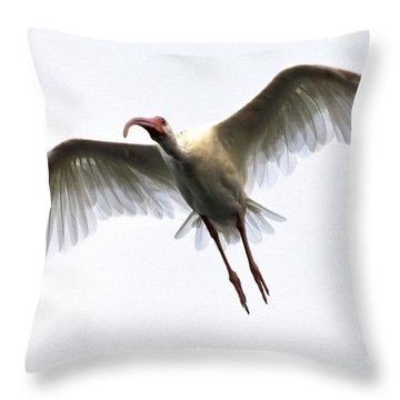 White Ibis Throw Pillow by Mark Newman