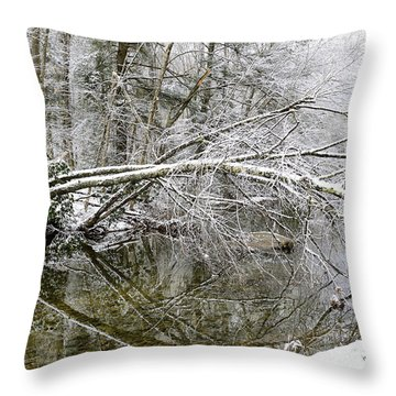 Winter Along Cranberry River Throw Pillow by Thomas R Fletcher
