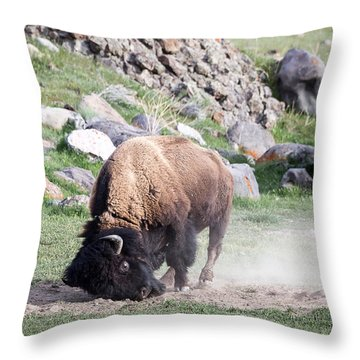 Yellowstone Bison Throw Pillow