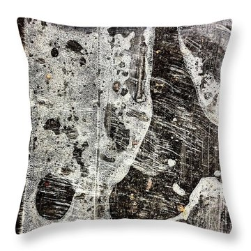 Plastic Throw Pillow by Jason Michael Roust