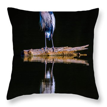 Throw Pillow featuring the photograph Great Blue Heron by Brian Stevens