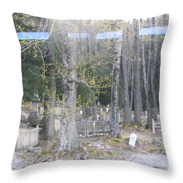 300yr Cemetery Throw Pillow by Brian Williamson