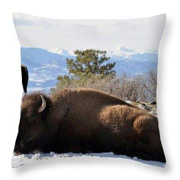 302 Throw Pillow