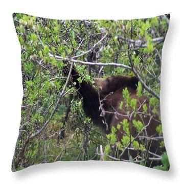 3159 Breakfast In Alaska Digital File Throw Pillow