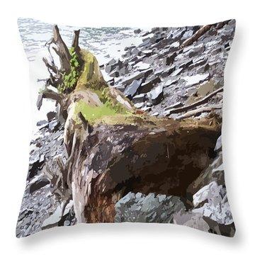 3206 Alaskan Rain Forest Shore Line Throw Pillow