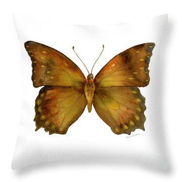 34 Charaxes Butterfly Throw Pillow by Amy Kirkpatrick