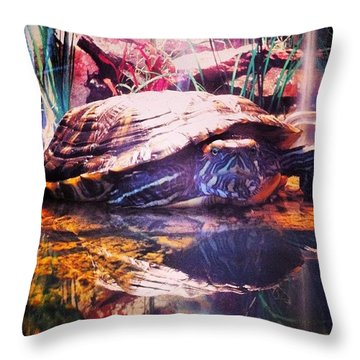 Padme The Turtle Throw Pillow