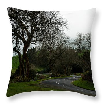 Throw Pillow featuring the photograph Azores Landscapes by Joseph Amaral