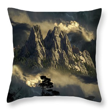3694 Throw Pillow