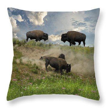3703 Throw Pillow by Peter Holme III