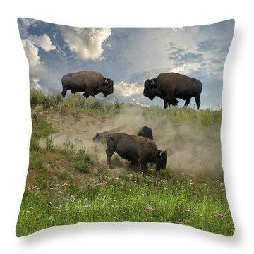 3703 Throw Pillow