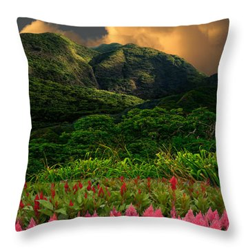 3717 Throw Pillow