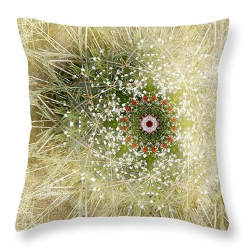 3719 Throw Pillow