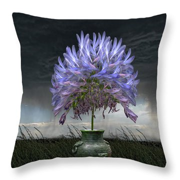 3727 Throw Pillow