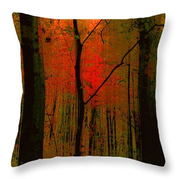 3734 Throw Pillow
