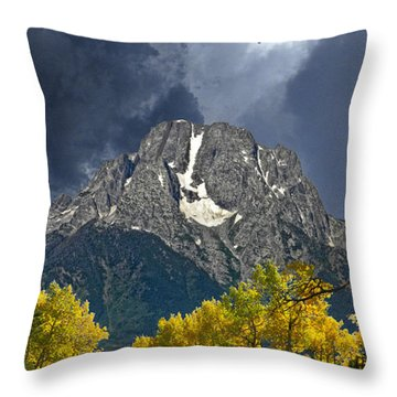 3740 Throw Pillow