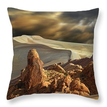 3772 Throw Pillow by Peter Holme III