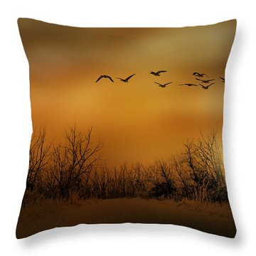 3782 Throw Pillow by Peter Holme III