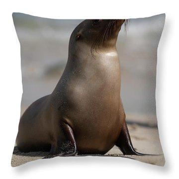 Mammal Throw Pillows
