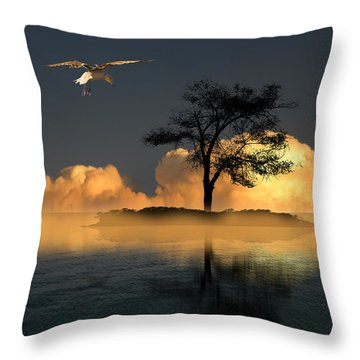 3806 Throw Pillow