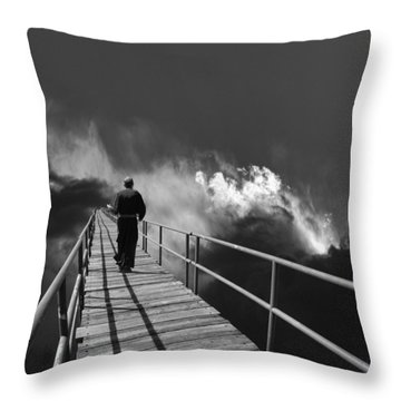 3815 Throw Pillow by Peter Holme III