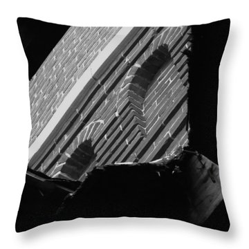 Throw Pillow featuring the photograph 3rd Little Pig Bw by Elizabeth Sullivan