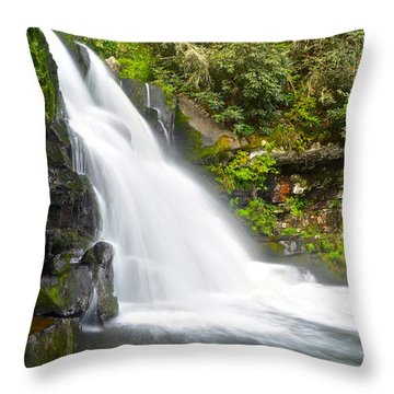 Abrams Falls Throw Pillow by Frozen in Time Fine Art Photography
