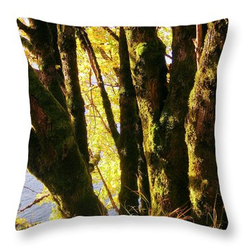 Autumn 3 Throw Pillow by J D Owen