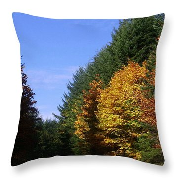 Autumn 9 Throw Pillow by J D Owen