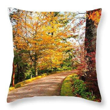 Autumn Colors Throw Pillow by Gaspar Avila