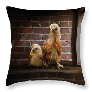 4. Brick Chicks Throw Pillow