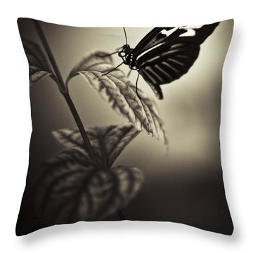 Butterfly Brown Tone Throw Pillow