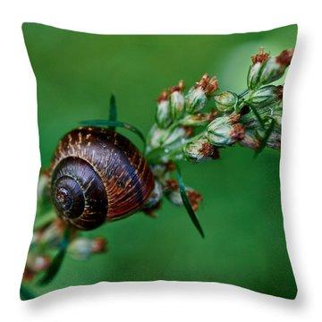 Copse Snail Throw Pillow by Jouko Lehto