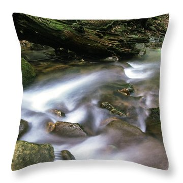 Cranberry Wilderness Throw Pillow by Thomas R Fletcher