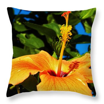 Throw Pillow featuring the photograph Untouched Beauty by Faith Williams