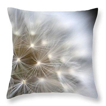 Dandelion Backlit Close Up Throw Pillow