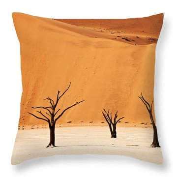 Dead Vlei In Namib Desert Throw Pillow by Juergen Ritterbach