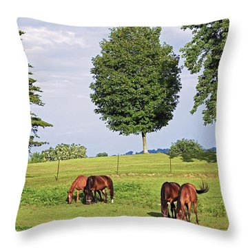 Throw Pillow featuring the photograph 4 For Lunch by Lorna Rogers Photography