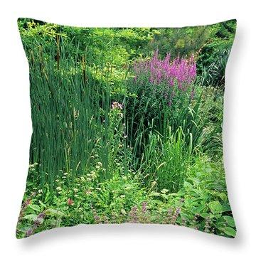 Bulrush Throw Pillows