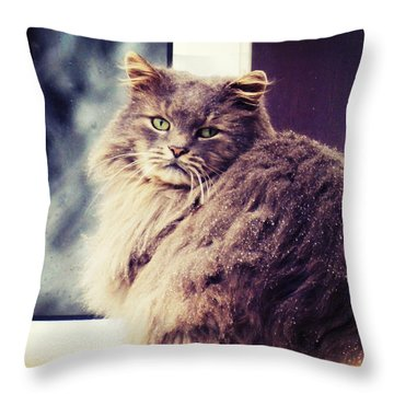 Gaze Throw Pillow by Zinvolle Art