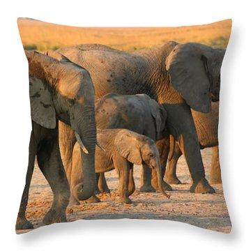 Throw Pillow featuring the photograph Kalahari Elephants by Amanda Stadther