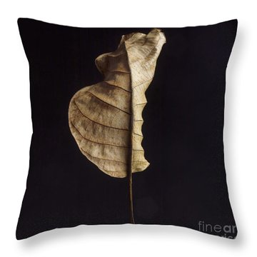 Leaf Throw Pillow by Bernard Jaubert