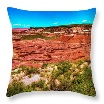 Painted Desert National Park Panorama Throw Pillow by Bob and Nadine Johnston