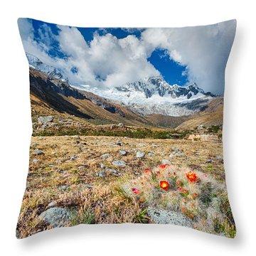 Paso Punta Union  Throw Pillow
