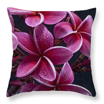 Plumerias Throw Pillow by James Roemmling