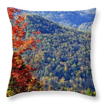 Point Mountain Overlook Throw Pillow by Thomas R Fletcher