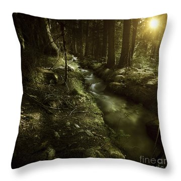Small Stream In A Forest At Sunset Throw Pillow by Evgeny Kuklev