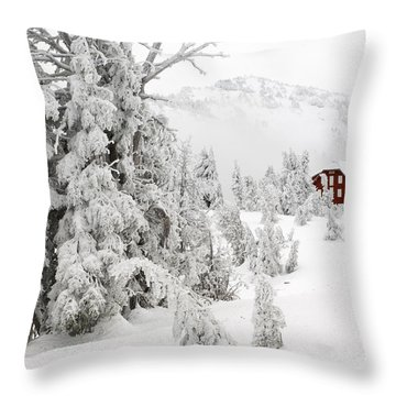 Snow And Ice On Trees Throw Pillow by John Shaw