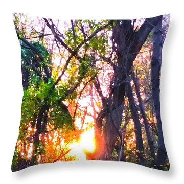 Throw Pillow featuring the photograph Sun Rise by Rose Wang